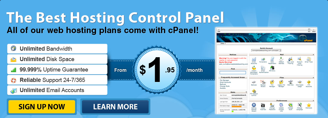 Make your life easy - use one of the most popular web hosting control panel